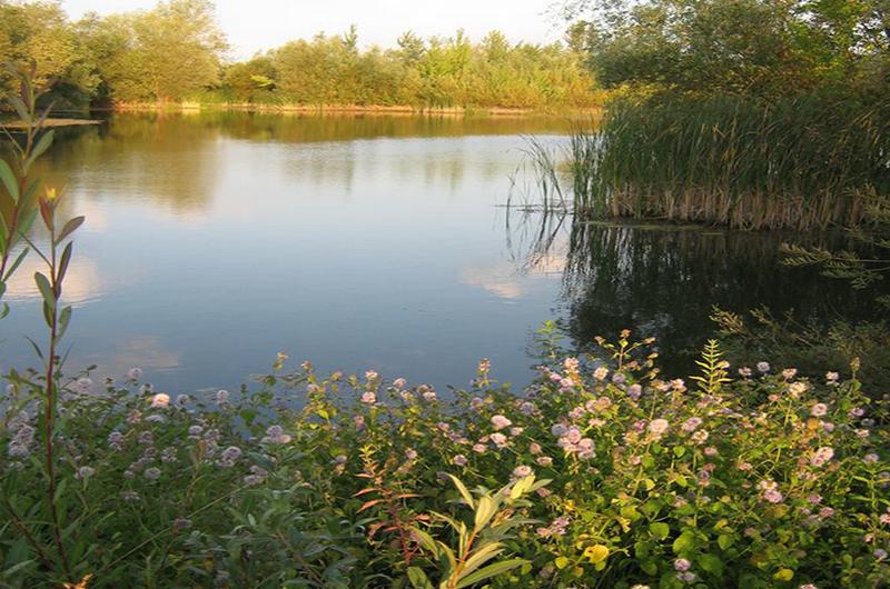 Saransko jezero 1а