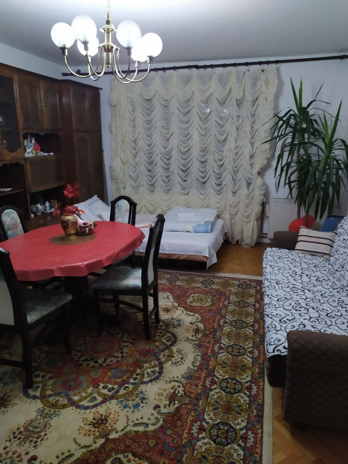 Ljupka, Pancevo 5
